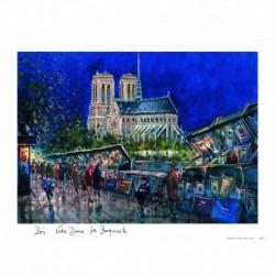 Notre Dame de Paris nuit