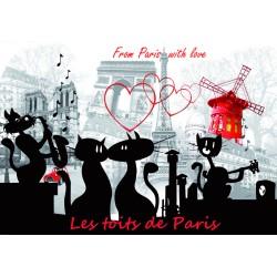 Tour Eiffel + monuments de Paris Chat