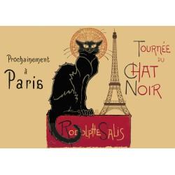 Chat Noir + Tour Eiffel
