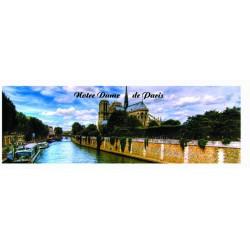 NOTRE DAME DE PARIS EN SOIREE
