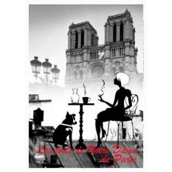 LES TOITS DE PARIS NOTRE DAME