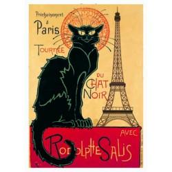 CHAT NOIR A PARIS
